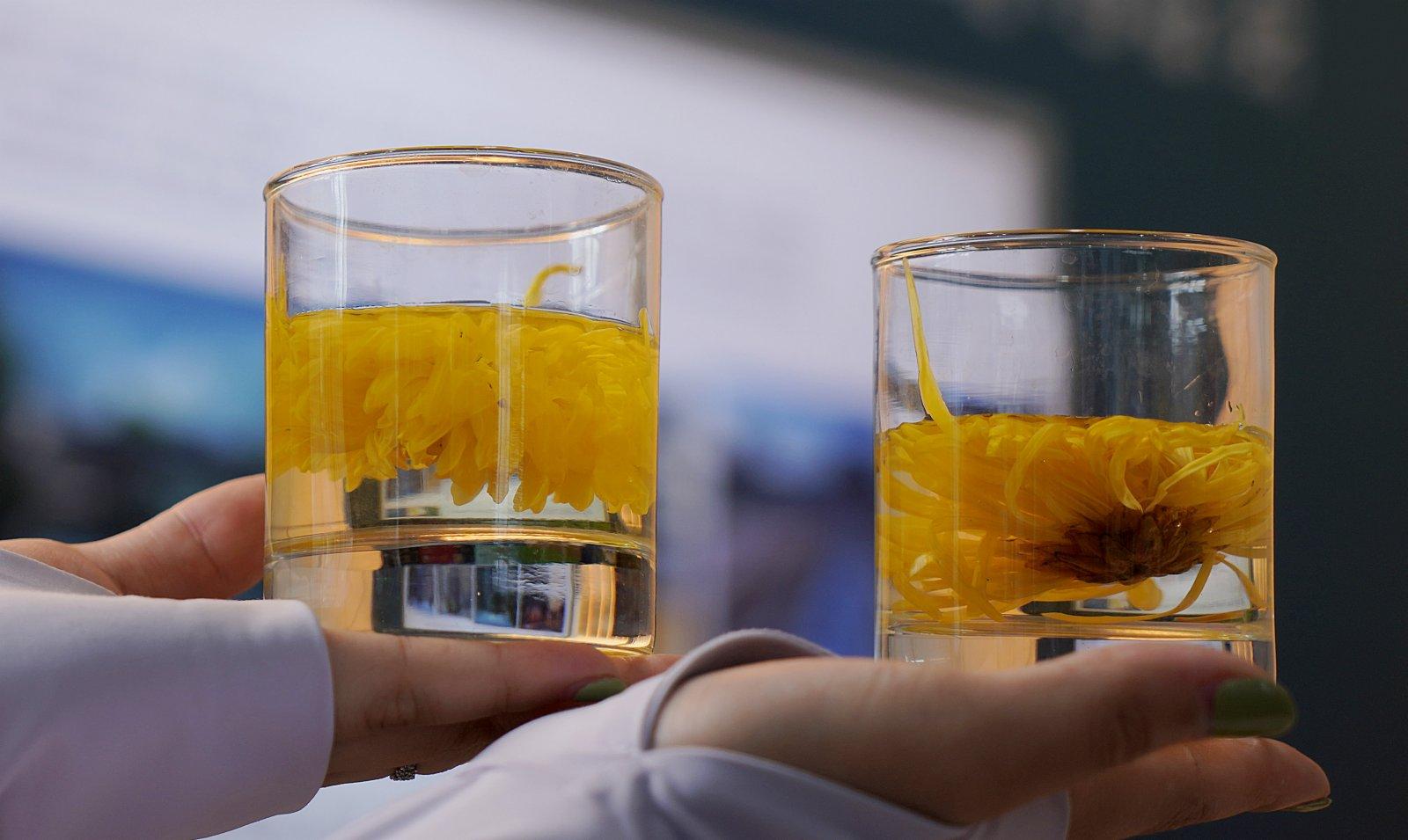 9月3日,工作人員在服貿會首鋼園展區「中國天然氧吧國際旅遊節」展位展示由來自江西浮梁的菊花泡製的茶。(新華社)