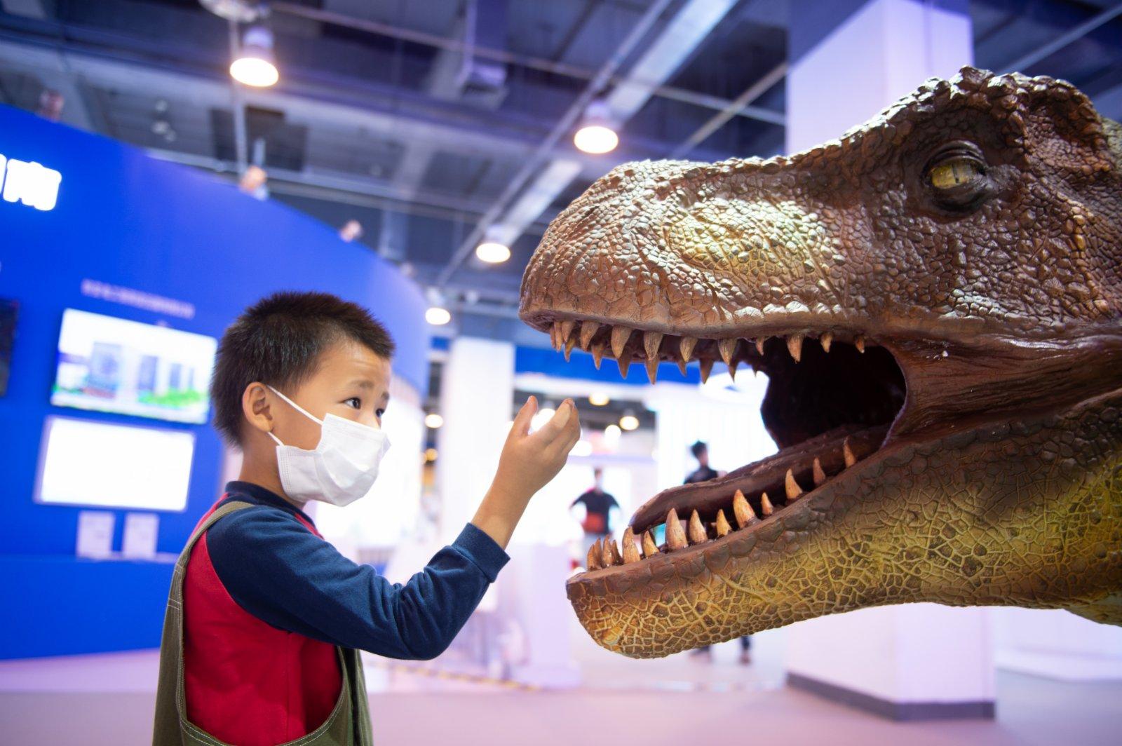 9月4日,小朋友在服貿會國家會議中心展區四川展位觀看恐龍模型。(新華社)