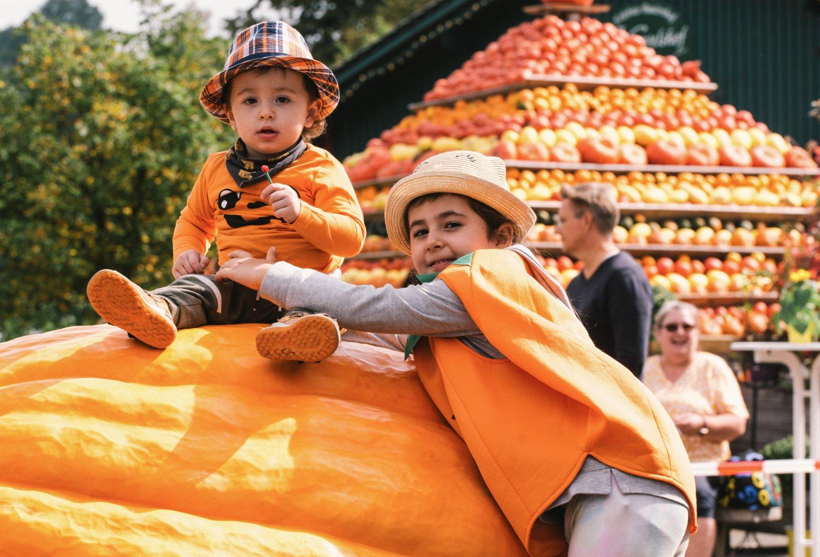 9月12日,在德國洛馬爾傳統南瓜節上,兒童在一個巨型南瓜上留影。