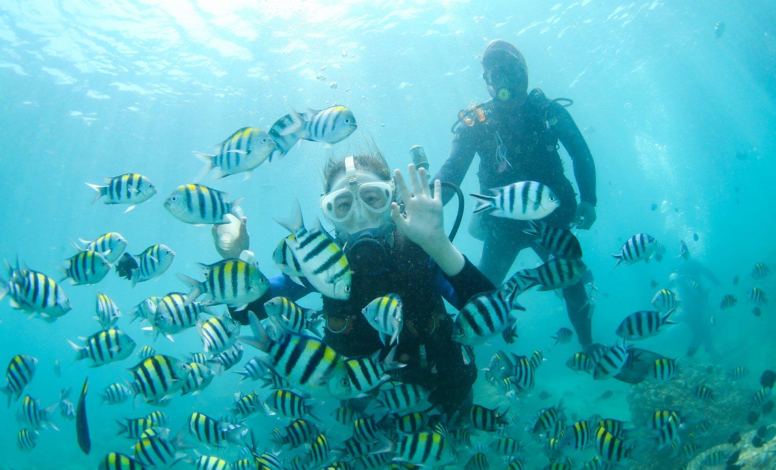 遊客在分界洲島海域體驗潛水。(新華社)